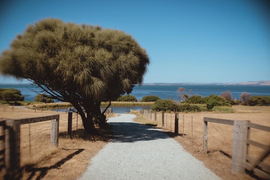 Национальный парк Черчилл Айленд Марин (Churchill Island Marine National Park)