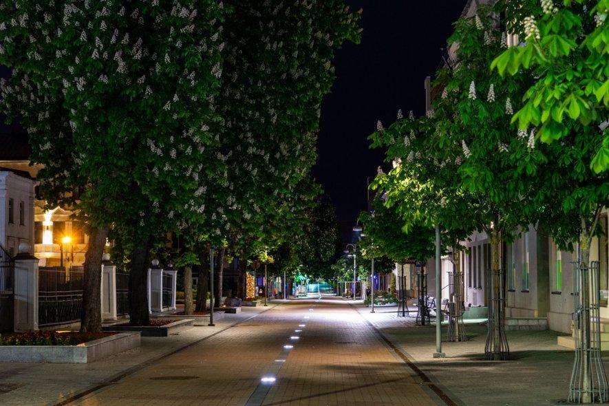 Центральная городская пешеходная улица