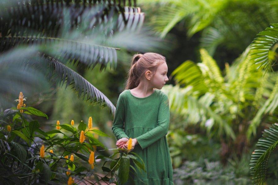 Теплицы ботанического сада