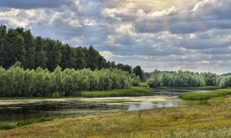 Озеро Москвичево