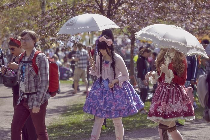 Вишневый парк в японском стиле Roihuvuoren japanilaistyylinen puutarha,