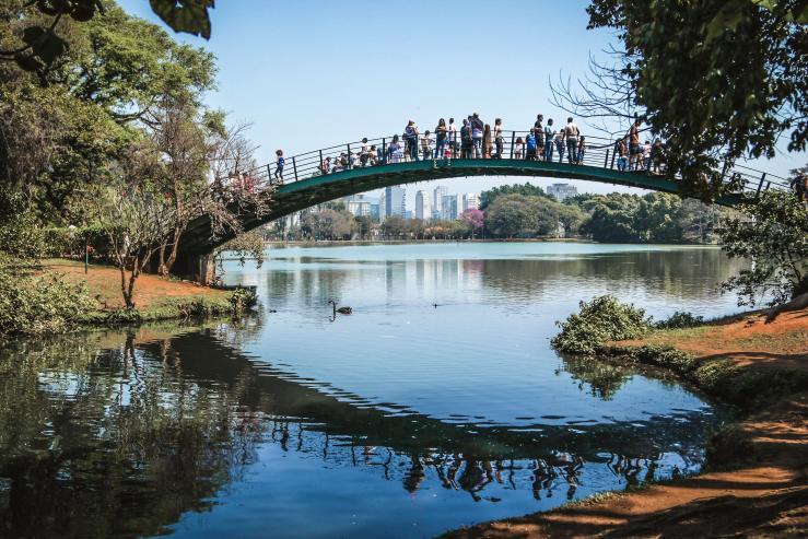 Парк Ибирапуэра, Parque Ibirapuera Conservação