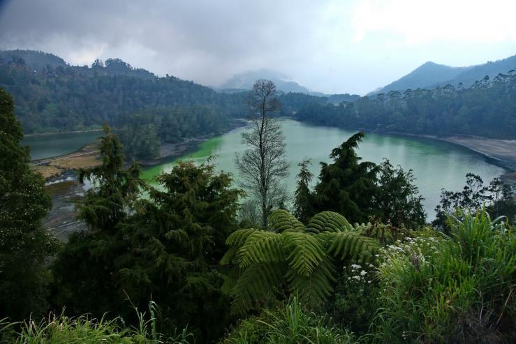 Telaga Warna, озеро Цветное