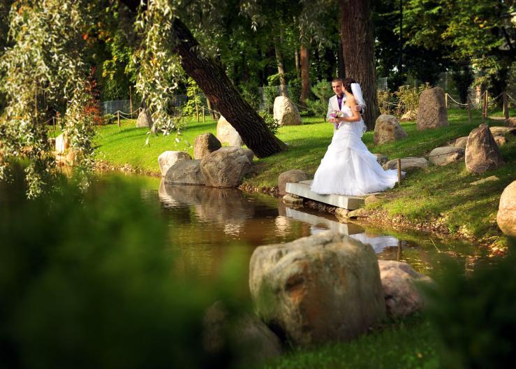 Японский сад в парке Кадриорг