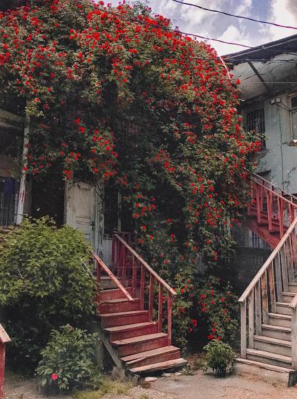 Инста Локация «Розовый домик»