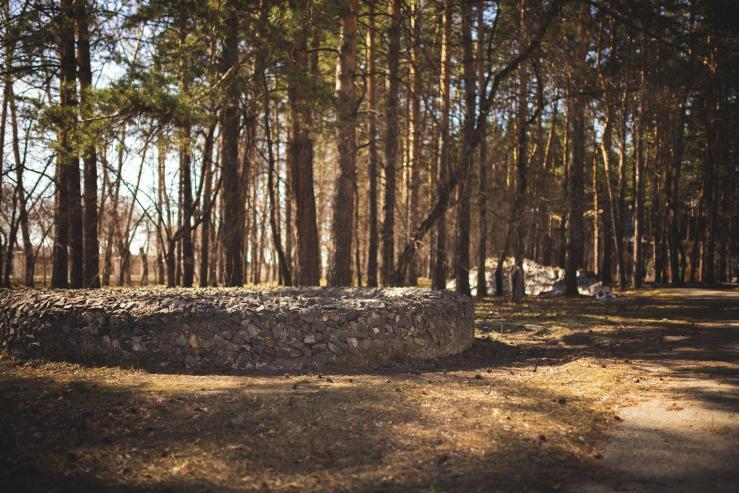 Первомайский парк культуры и отдыха