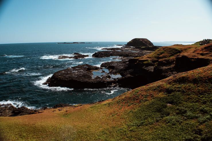 Природный парк «Остров Филипп» (Phillip Island Nature Park)