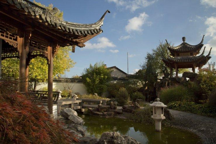 Китайский садик