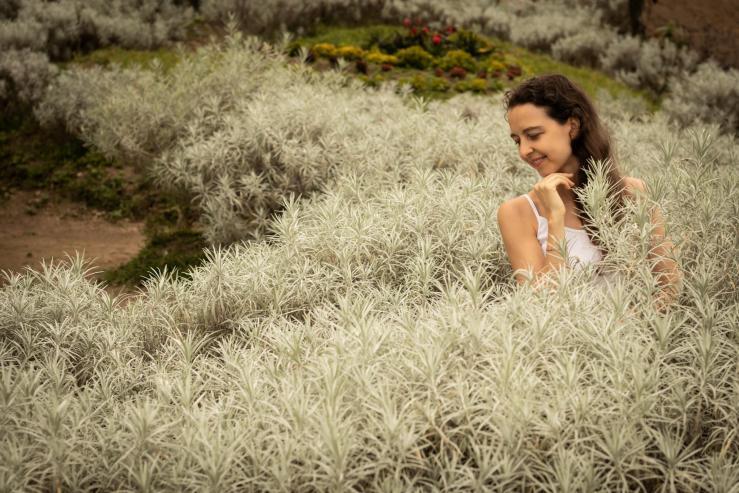 Taman Edelweis Bali - Эдельвейсовые поля